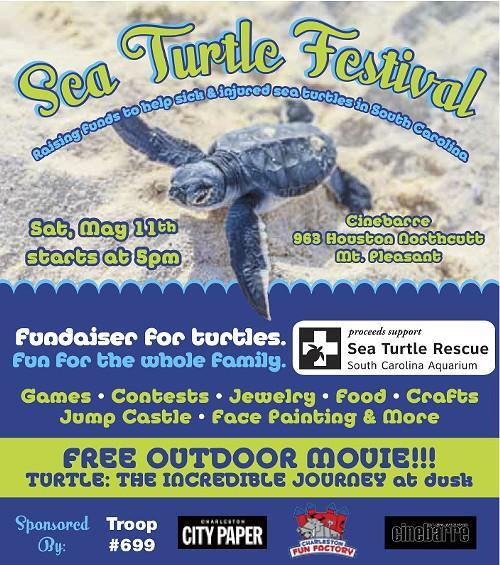 seaturtlefestival