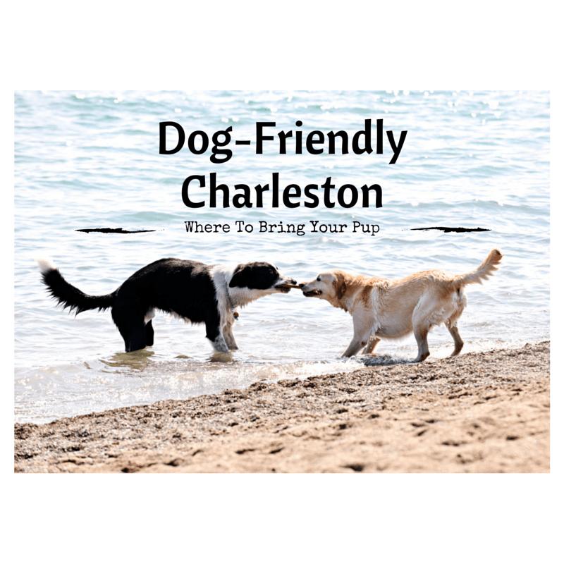 Dog-FriendlyCharleston(2)