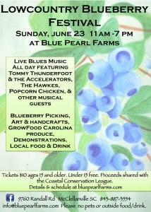 blueberryfest