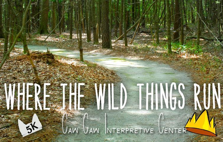 wherethewildthingsrun