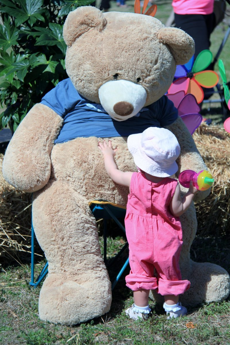 2014 Teddy Bear Picnic 249