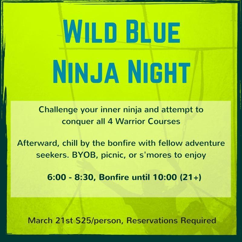 Ninja Night flyer(1)