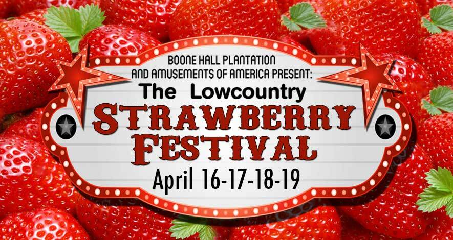 strawberry15